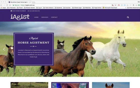 Horse Agistment Website Makeover